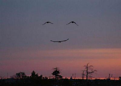 Úsmev na oblohe