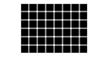Bielo-čierny bod